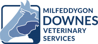 Downes Vets
